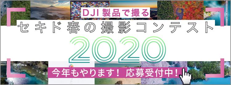 セキド撮影コンテスト 2020