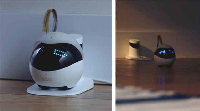 ペット用 スマートロボット Ebo (イーボ)