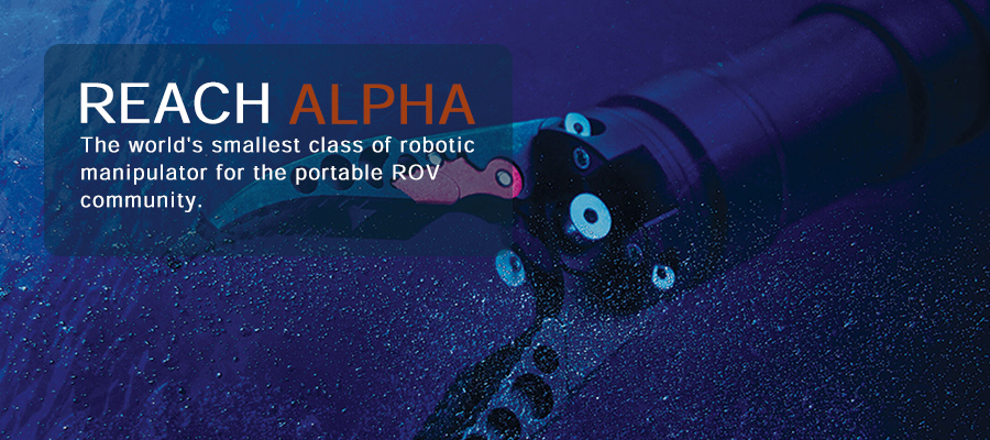 REACH ALPHA